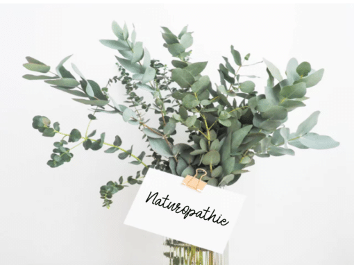 bysohealthy naturopathie interview