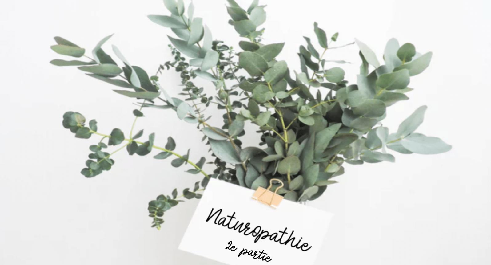 bysohealthy-naturopathie-sonia-robino-entretien-2
